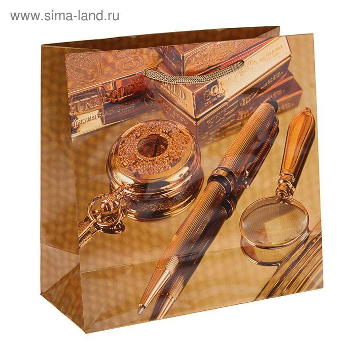 """Пакет подарочный """"Сбережение"""" 23 х 22,5 х 10 см"""