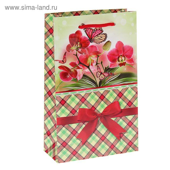 """Пакет подарочный """"Пробуждение"""" 26,5 х 16,5 х 7 см"""