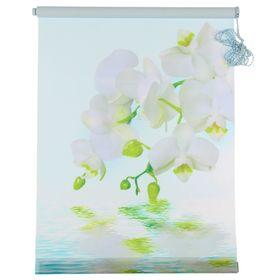 Штора-ролет «Орхидея», размер 50х160 см, цвет голубой