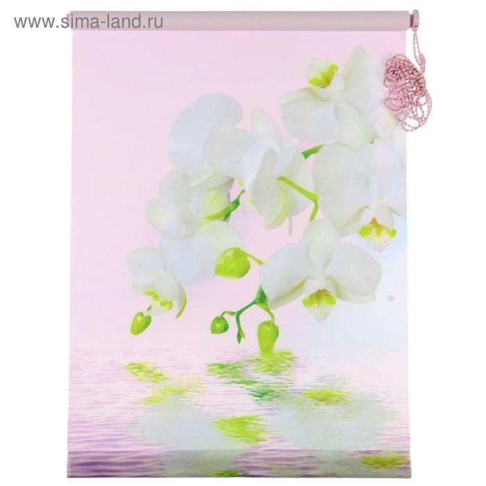 """Ролет-штора 50х160 см """"Орхидея"""", цвет розовый"""