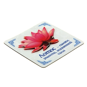 """Surround the magnet with a postcard """"Lotus"""", the joy"""