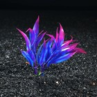 Растение искусственное аквариумное, 10 см