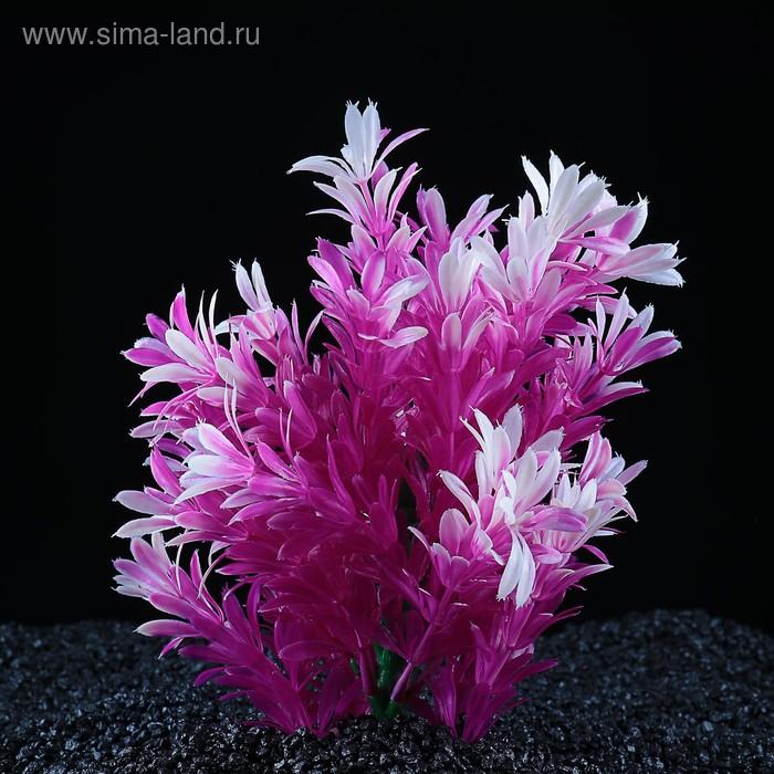 Растение искусственное аквариумное, 15 х 10 х 20 см