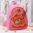 Рюкзак детский на молнии, 2 отдела, розовый