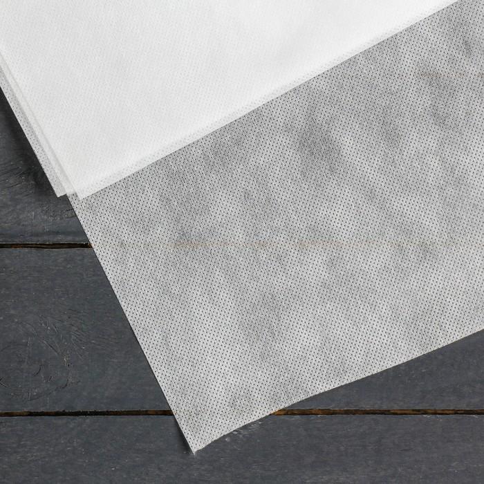 Материал укрывной, 5 × 1,6 м, плотность 60, с УФ-стабилизатором, белый, «Агротекс»