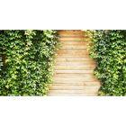 Фотосетка, 250 × 158 см, с фотопечатью, «Деревянный забор с плющом»