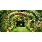 Фотосетка, 250 × 158 см, с фотопечатью, «Цветущая аллея»