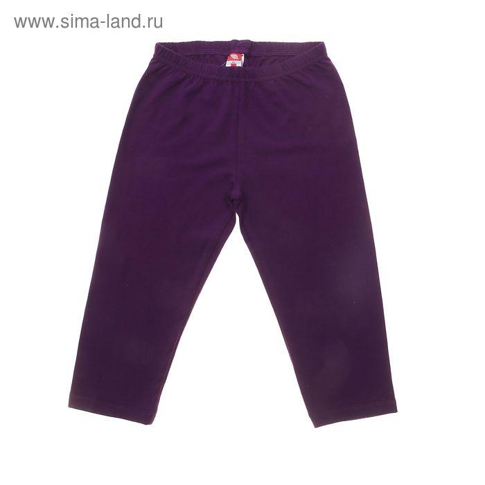 Бриджи для девочки, рост 128 см (64), цвет фиолетовый (арт. CSJ 7498)