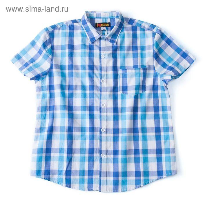 Рубашка для мальчика, рост 140 см, цвет голубой, принт клетка (арт. 91023б)