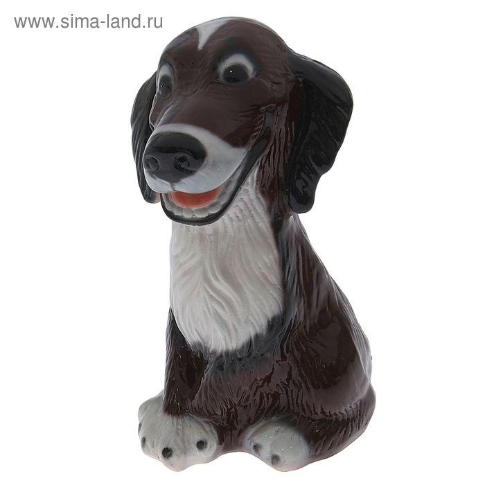 """Копилка """"Собака Шарик """" глянец, коричневая"""
