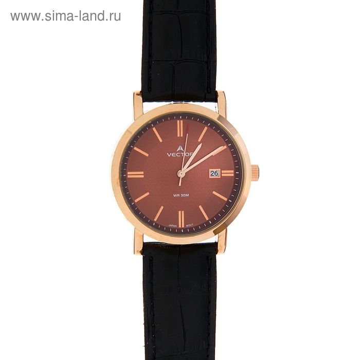 Часы наручные VECTOR VC8-013593