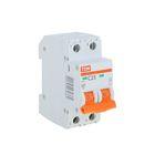Выключатель автоматический TDM ВА47-29, 2п, 25 А, 4.5 кА, SQ0206-0095