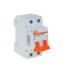 Выключатель автоматический TDM ВА47-29, 2п, 32 А, 4.5 кА, SQ0206-0096