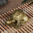 "Netsuke bronze ""Turtle coins"""