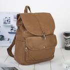 Рюкзак молодёжный, отдел на шнурке, 2 наружных кармана, цвет коричневый