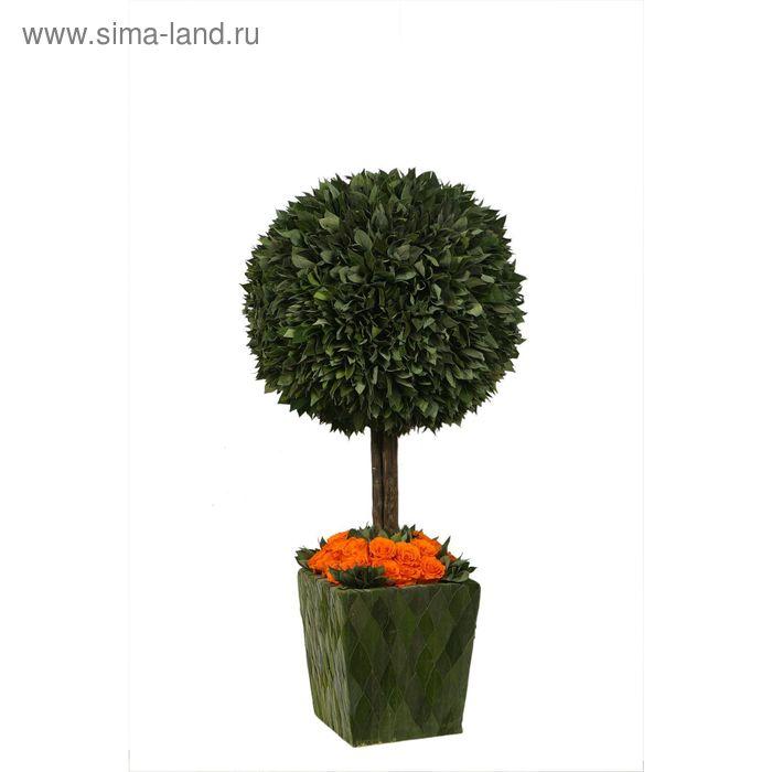 """Декоративная композиция """"Стриженое дерево в горшочке"""" с оранжевыми розами, 36 х 36 х 70 см"""