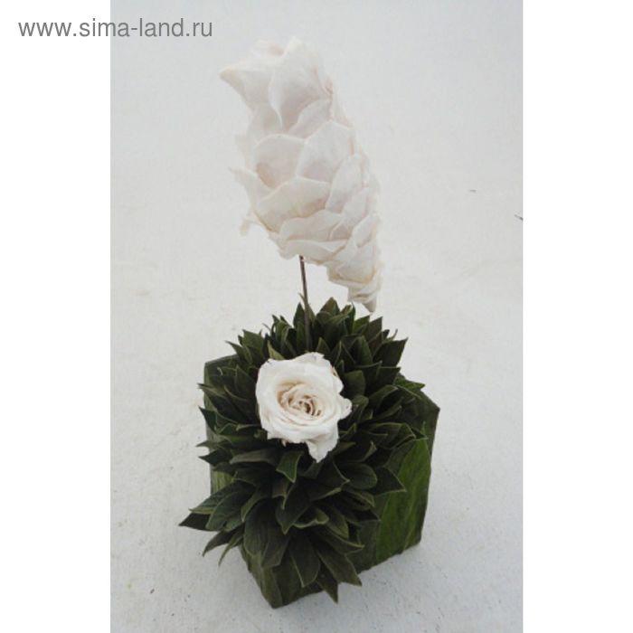 """Декоративная композиция """"Колибри"""" на основании из велюровых листьев и лепестков роз, белый"""