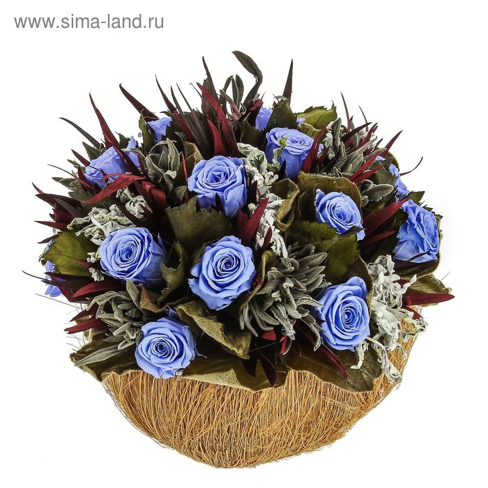 """Декоративная композиция """"Кокос"""", 20 х 20 х 18 см, синий"""