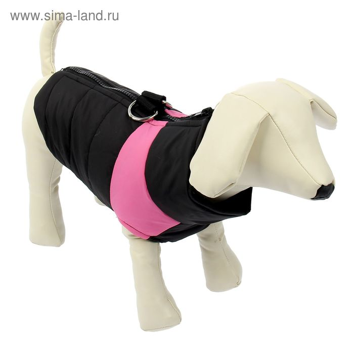 Куртка на синтепоне с креплениями для поводка, размер S (ОГ 35 см, ДС 22,5 см), черная с розовым