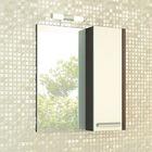 "Зеркало-шкаф для ванной ""Барселона-70"" 80 х 70 х 15 см, цвет венге"