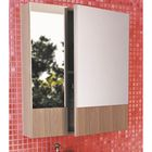 """Зеркало-шкаф для ванной """"Ницца-60"""" 67 х 60 х 13 см, цвет сосна лоредо"""