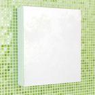 """Зеркало-шкаф для ванной """"Римини-60"""" 70 х 60 х 15 см, белый"""
