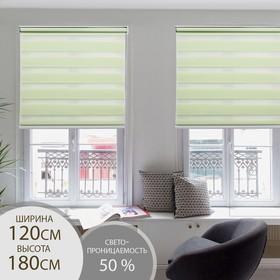 Штора рулонная «День-Ночь», 120×180 см (с учётом креплений 3,5 см), цвет зелёный
