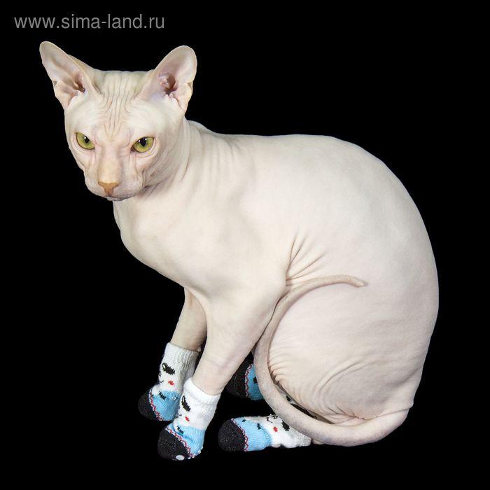 """Носки хлопковые нескользящие """"Белый медведь"""", размер S (2,5/3,5 * 6 см), набор 4 шт"""