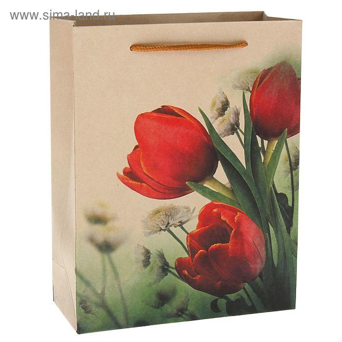 """Пакет крафт """"Тюльпаны"""", 19 х 25 х 8 см"""