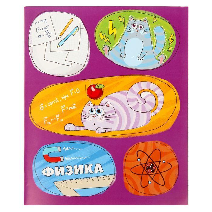 """Тетрадь предметная 48 листов """"Физика"""""""