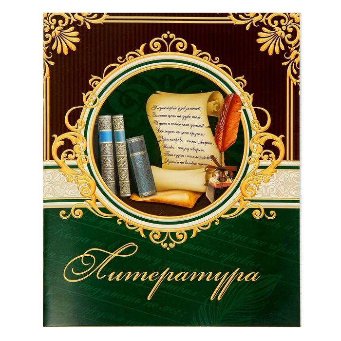 """Тетрадь предметная 48 листов """"Литература"""" классика"""