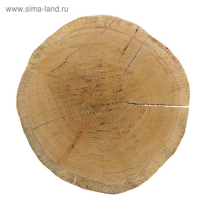 Спил дубовый шлифованный, СДШ 2, сушёный (d 25-30см, h 3см), шт