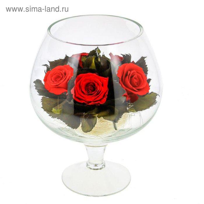 Композиция в вазе, розы красные, 19,5 х 19,5 х 20 см