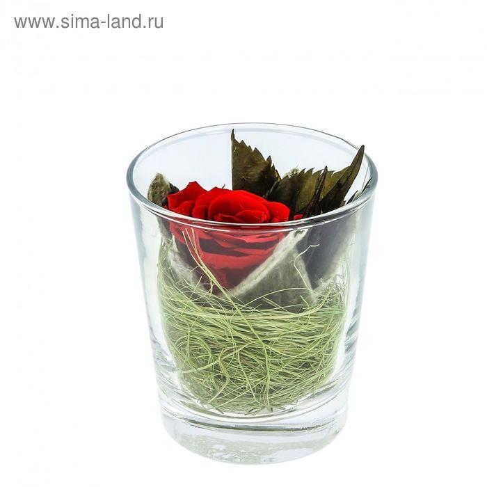 "Композиция в вазе ""Измир"", роза красная, 7,1 х 7,1 х 8,3 см, 175 мл"