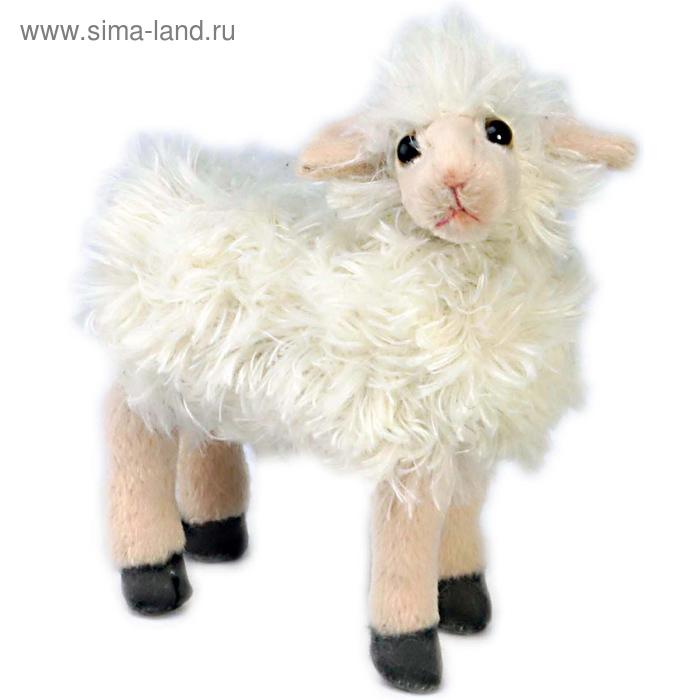"""Мягкая игрушка """"Овца"""""""