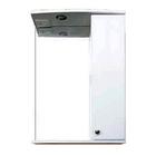"Шкаф-зеркало Iris ""Панда"" 550/с 3D, белый цветы"