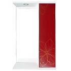 "Шкаф-зеркало Iris ""Панда"" 550/с 3D, красные цветы"