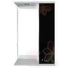 "Шкаф-зеркало Iris ""Панда"" 550/с 3D, черные цветы"