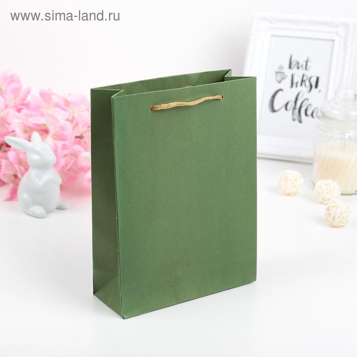 Пакет крафт зелёный, 15 х 20 х 6 см