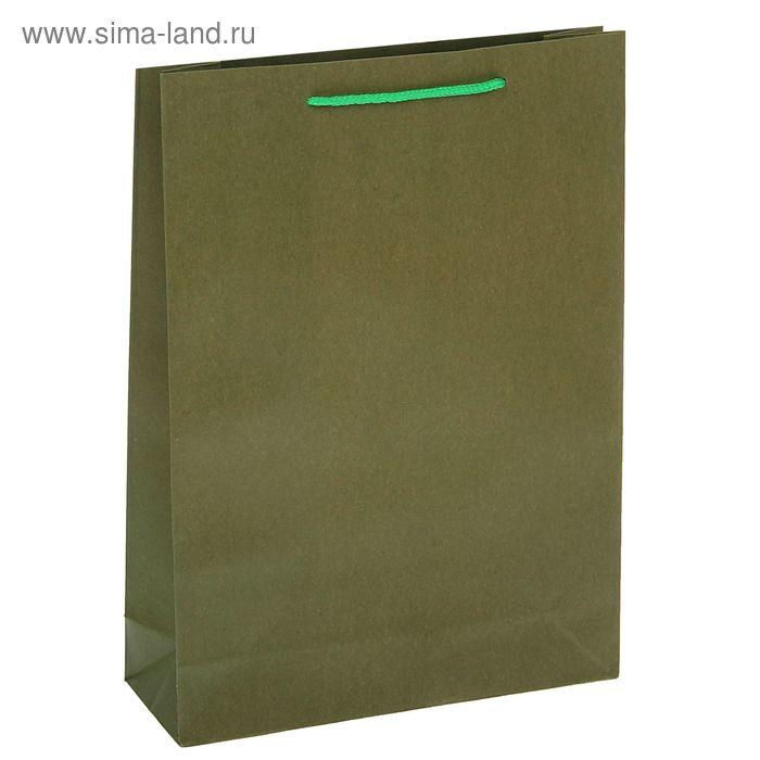 Пакет крафт зелёный, 23 х 32 х 8,5 см