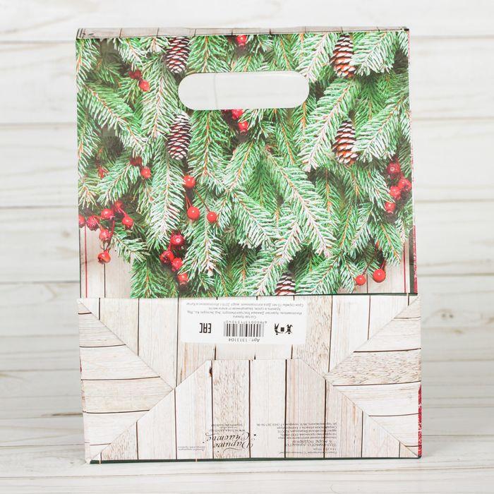 Пакет подарочный «С Новым годом!», 18 × 23 × 10 см