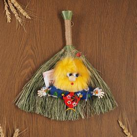 "Charm ""Domovska"", on the broom, mixed"