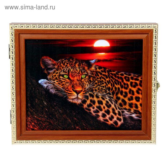 "Ключница ""Леопард в ночи"" МИКС"