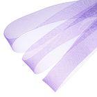 Регилин плоский, 40мм, 45±1м, цвет фиолетовый