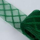 Регилин плоский «Клетка», 45 мм, 22 ± 1 м, цвет зелёный
