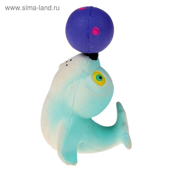 Игрушка для ванной латексная «Тюлень цирковой», цвета МИКС