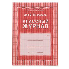 Классный журнал для 5-9 классов А4, 168 страниц, твердая ламинированная обложка, блок офсет 65г/м2