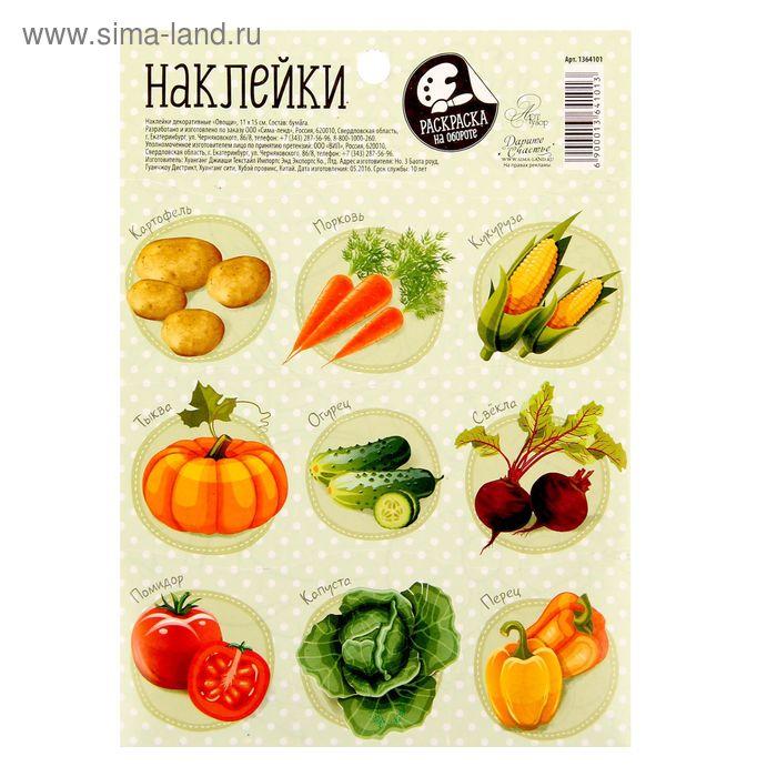 Наклейки с раскраской на обороте «Овощи», 11 х 15 см