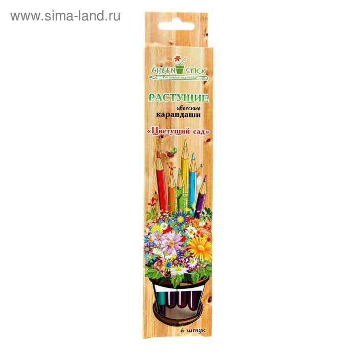 """Растущие карандаши Green Stick """"Цветущий сад"""", набор 6 шт., цветные"""