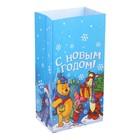 """Пакет подарочный без ручек """"С новым счастьем!"""", Медвежонок Винни и его друзья, 10 х 19,5 х 7 см"""